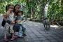Indonesia_Bali_Ubud_008